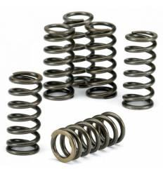 Пружины сцепления EBC CSK016 (комплект) Honda FX650 / FMX650 / NX650 Dominator / SLR650 / XR650L 93-